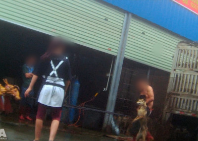 Outside Yulin slaughterhouse, June 2016