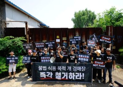 lca-s-korea-protest-dog-auction-house-rescue1