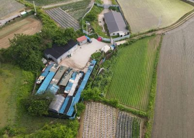 16 Dog Slaughterhouse - Aerial view